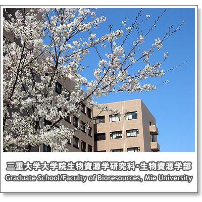 campus2008_4.jpg
