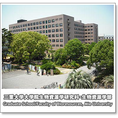 campus2008_8.jpg