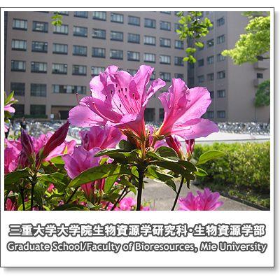 campus2008_5.jpg