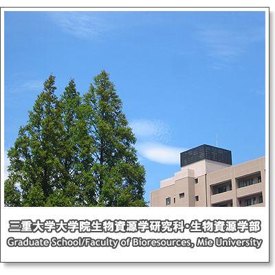campus2008_9.jpg